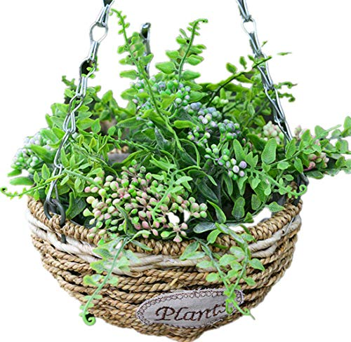 Kingbuy Hanging Flower Plant Indoor Outdoor Basket Planter Holder Growers Hanging Basket Planter with Chain Flower Plant Pot Home Garden Balcony Decoration-1pcs large