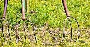 What are Pitchforks Used for